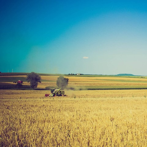 photo of countryside fields and combine harvester